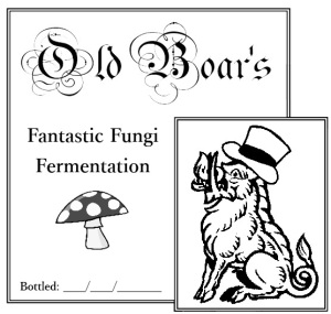 Fantastic Fungi Fermentation label