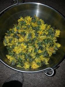 1 kg of dandelions